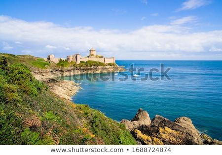 wybrzeża · Europie · ocean · kwiaty · wody - zdjęcia stock © bertl123