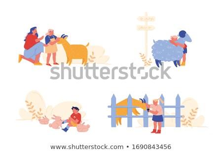 子供 · 小さな · ヤギ · 草 · 食べ · 動物 - ストックフォト © goce