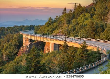 blue ridge parkway Stock photo © alex_grichenko