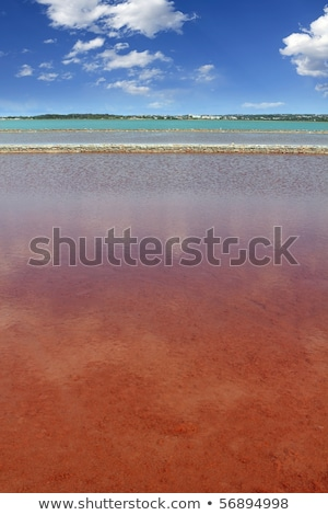 Ses Salines Formentera saltworks salt texture Stock photo © lunamarina