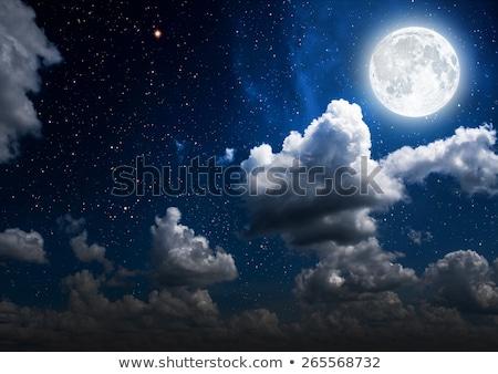 Bright moon in night sky Stock photo © zzve
