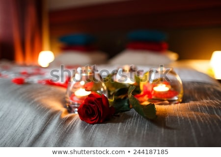 meghitt · aranyos · pár · szeretet · kettő · kókusz - stock fotó © tommyandone