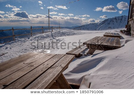Shelter in snowstorm Stock photo © gophoto