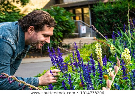 attractive man is smelling park flowers Stock photo © meinzahn
