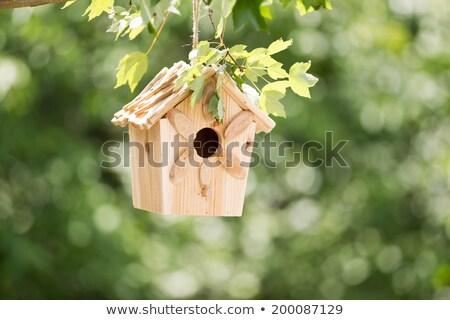 Wooden Birdhouse Hanging In The Tree Stock photo © Kuzeytac