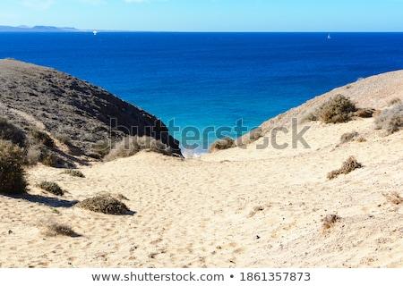 view to playa blanca from playa de papagayo stock photo © meinzahn