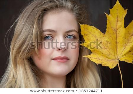グラマラス 肖像 小さな 美少女 ビッグ 青い目 ストックフォト © vlad_star