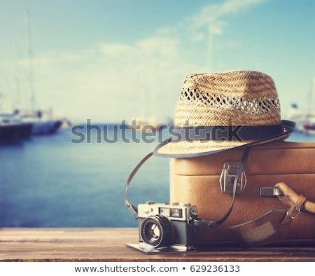 Vintage camera style on wooden background with retro filter effe Stock photo © happydancing