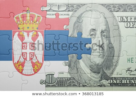 USA and Serbia Flags in puzzle Stock photo © Istanbul2009