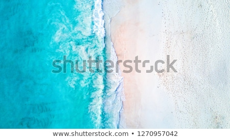 Beach on tropical island. Clear blue water and sky  Stock photo © master1305
