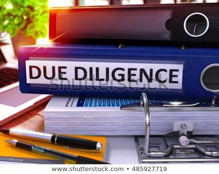 Due Diligence on Ring Binder. Blured, Toned Image. Stock photo © tashatuvango