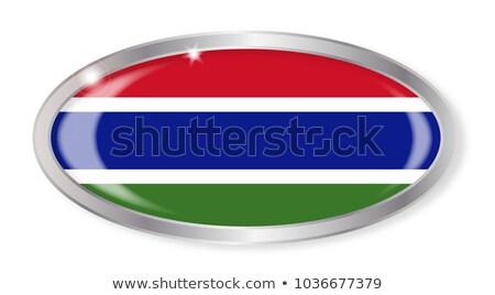 Gambian Flag Oval Button Stock photo © Bigalbaloo