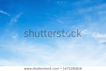 Sunny climate Stock photo © bluering