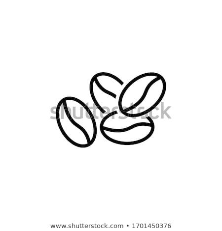 Kávébab vonal ikon vektor izolált fehér Stock fotó © RAStudio