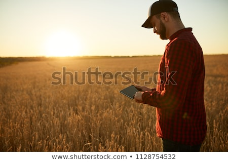Okos gazdálkodás modern technológiák mezőgazdaság férfi Stock fotó © stevanovicigor
