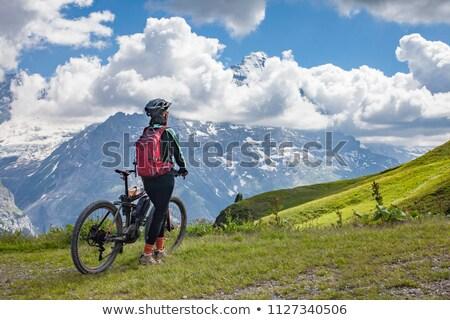 Горный велосипед Альпы спорт фитнес горные весело Сток-фото © IS2