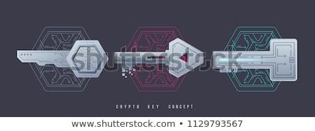titkosítás · kulcs · ikon · modern · számítógép · hálózat - stock fotó © wad