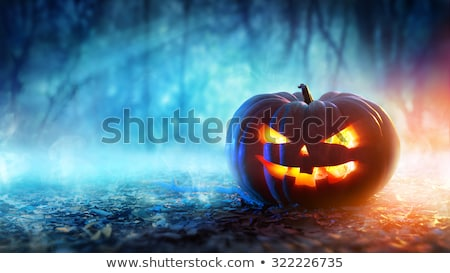 halloween pumpkins night Stock photo © romvo