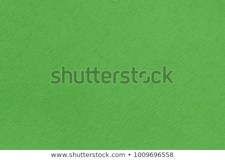 Green washed paper texture background. Recycled paper texture. Stock photo © ivo_13