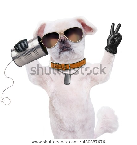 Laide chien parler cartoon illustration graphique Photo stock © cthoman