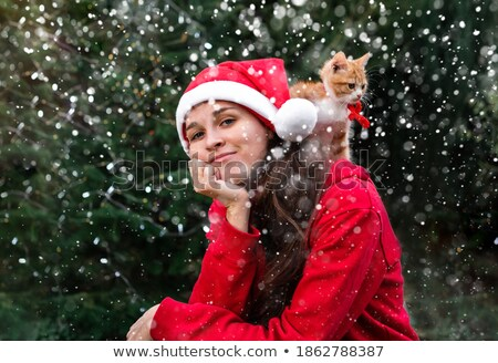 cute santa cat with stripes and red hat sits stock photo © feedough