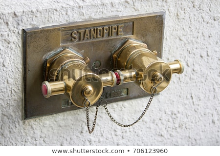 Brass City fire hydrant Stock photo © bobkeenan