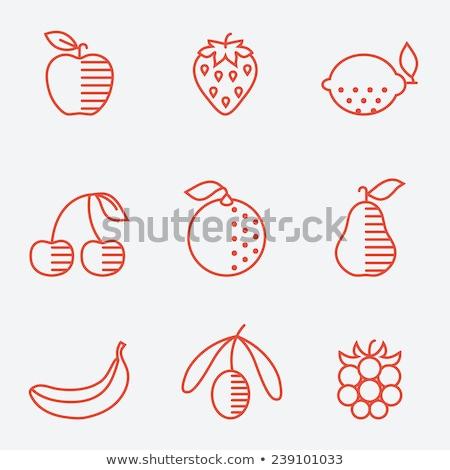 Laranja citrinos geométrico ícone vetor negócio Foto stock © blaskorizov