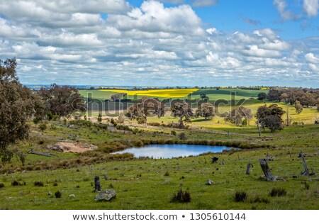 longe · ocidente · pormenor · velho · aldeia · céu - foto stock © lovleah