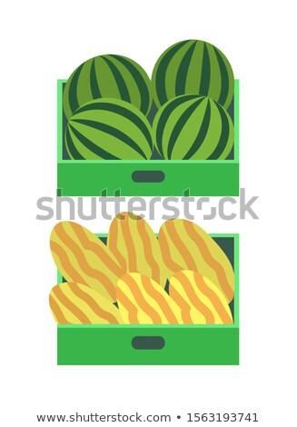 Melone anguria estate frutti scatole frutti di bosco Foto d'archivio © robuart