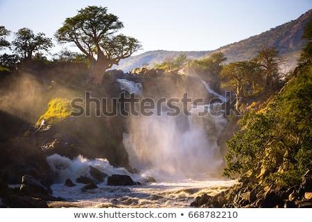 epupa falls on the kunene in namibia stock photo © artush