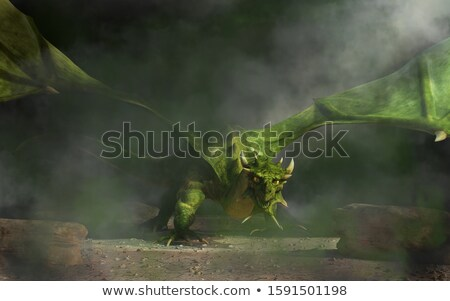 green fire breathing dragon Stock photo © bluering