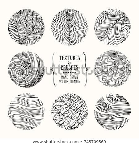 Establecer naturaleza elemento ilustración hierba resumen Foto stock © colematt