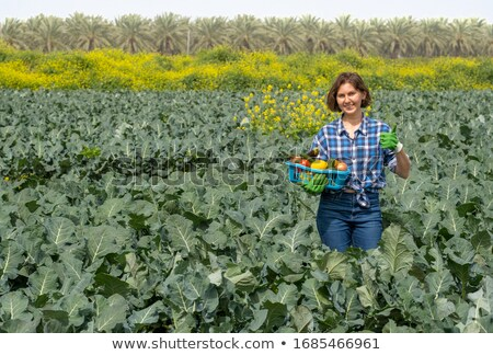 man with a basket full of lemons outdoors Stock photo © nito