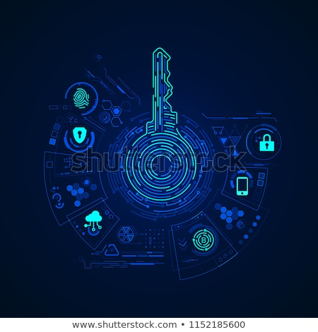 Lock with bitcoin symbol icon, cryptocurrency cyber security concept, private information, vector il Stock photo © MarySan