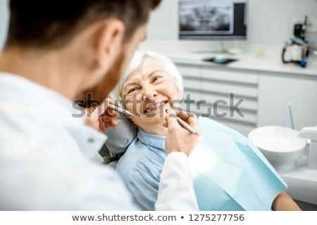 Vrouw tandarts werken tanden implantaat model Stockfoto © Elnur