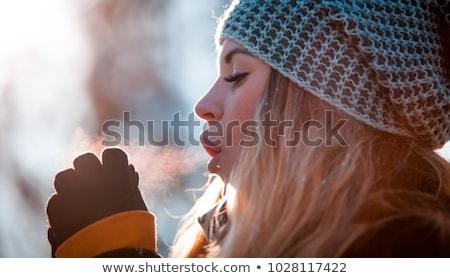 Kız eller nefes kış sezonu saç güzellik Stok fotoğraf © Lopolo