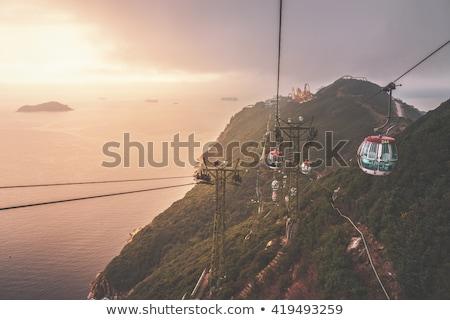 yeşil · park · Hong · Kong · yer · su · orman - stok fotoğraf © galitskaya