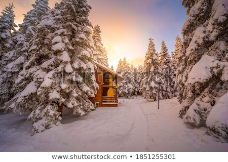 Christmas landscape with a snowy house in the mountains on a moo Stock photo © Kotenko