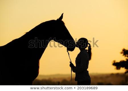 Equestrian sport on an orange background Stock photo © mayboro