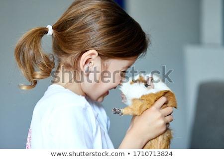 ребенка играет морская свинка пребывание время Kid Сток-фото © Illia