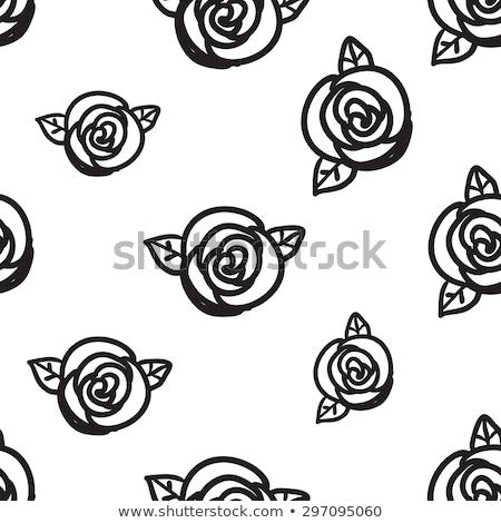 Cute schets steeg kiem eenvoudige zwarte Stockfoto © evgeny89