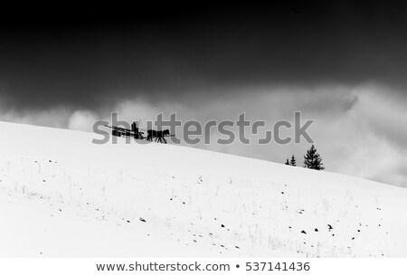 Hegy tájkép paraszt kosár égbolt felhők Stock fotó © Alkestida