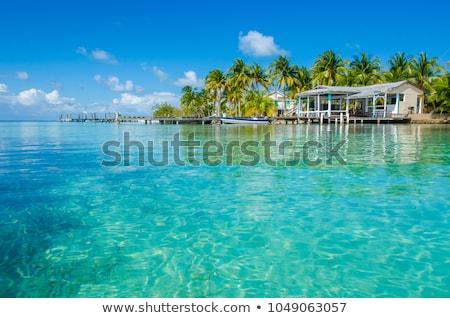 Belize Coast and turquoise ocean Stock photo © photoblueice