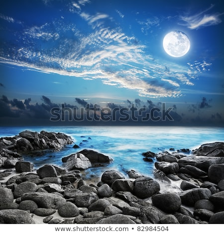 Luna piena tropicali l'esposizione a lungo shot cielo notte Foto d'archivio © moses