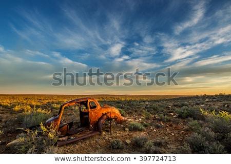Stock fotó: Elhagyatott · jármű · préri · antik · klasszikus · kopott