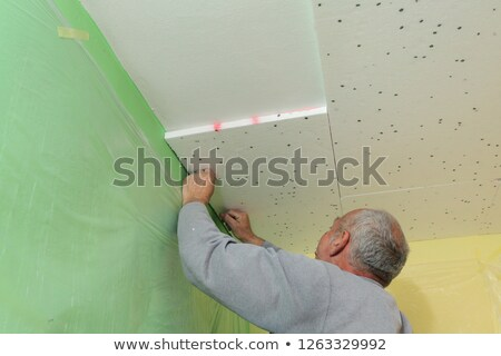 Contractor Installs Foam Insulation stock photo © lisafx