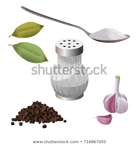 salt in spoon and shaker, bay leaves Stock photo © marylooo
