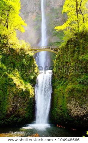 multnomah falls and bridge in the morning sun light stock photo © andreykr