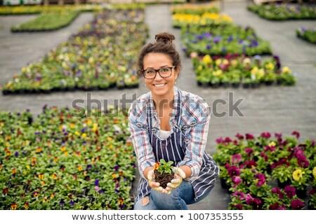 Frau lächelnd halten Blume glücklich Schönheit Gänseblümchen Stock foto © wavebreak_media
