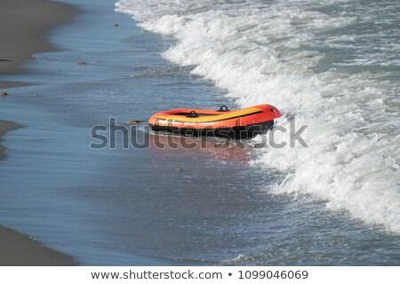 Powerful waves racing ashore Stock photo © jrstock